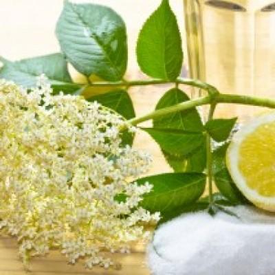 Manufaktur für Blüten