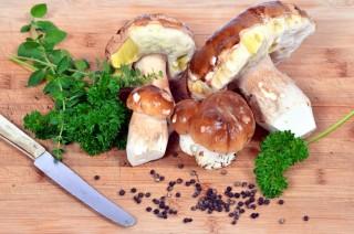 Pilze & Gemüse online kaufen