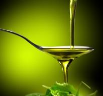 Öl &#8211; über 20 Sorten <button class=homepagecta><img src=/wp-content/uploads/2014/10/Zu_den_Produkten_2.png alt=Zu den Produkten></button>