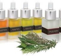Natürliches Aroma <button class=homepagecta><img src=http://www.die-scheune-delikatessen.de/wp-content/uploads/2014/10/Zu_den_Produkten_2.png alt=Zu den Produkten></button>