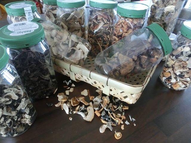 Neue Kategorie Getrocknete Pilze