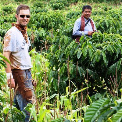 Kaffee aus Kambodscha – unsere Kaffeerösterei Three Corner Coffee Roaster