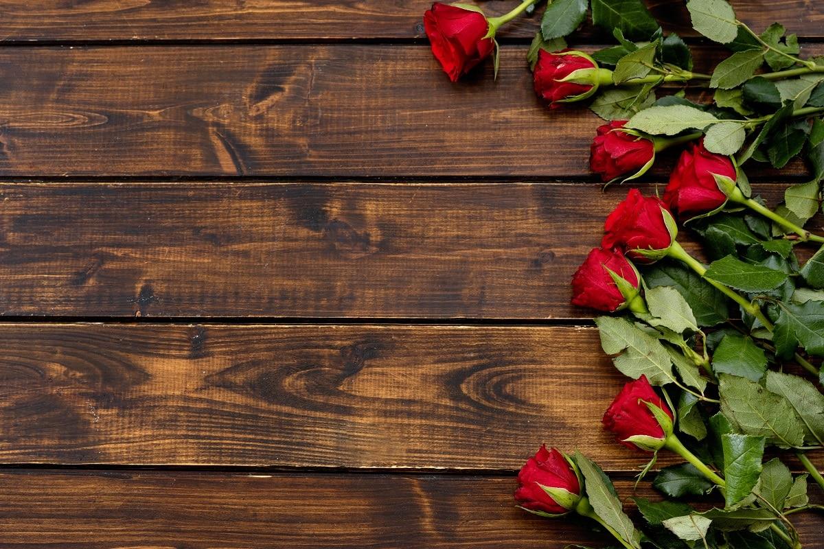 Muttertag – Rosen-Geschenke!